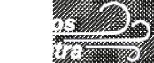 Preilos vėtra - logo